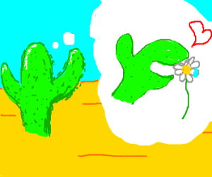 Cactus fantasy: Making out with a daisy