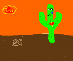 Cactus is lonely needs love