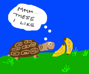 Tortise impressed by banana's flavor