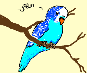 "Parakeet on a Branch, ""Ullo."""