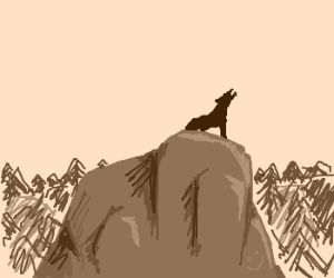 Wolf howls on a rock
