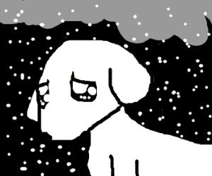 sad puppy?