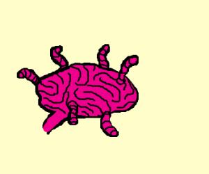 Pink brain worms