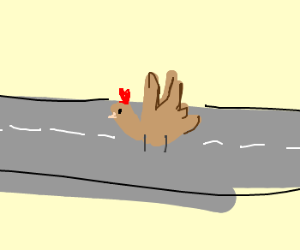 turkey in the road