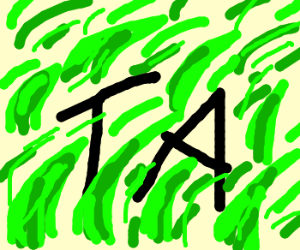 TA in the grass