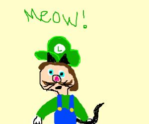 Luigi is gradually becoming a cat