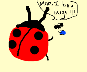 bugs about bugs