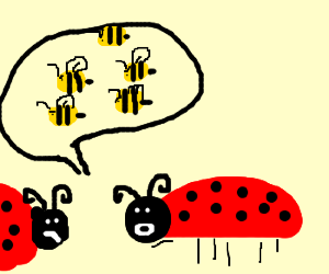 Ladybug warns about bee invasion