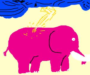 elephant hit by lightning