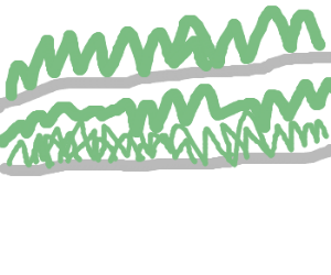 Grass on a bridge