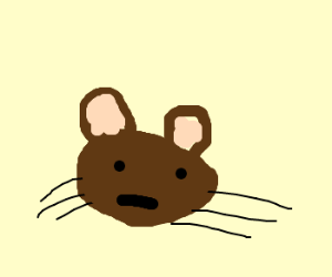 Baby jerry the mouse