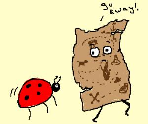 Ladybug following a treasure map.