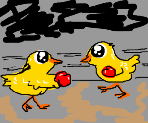 Chicks boxing