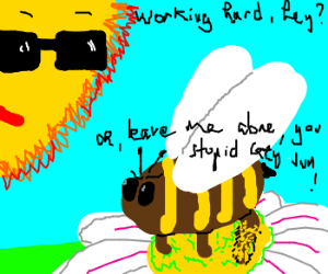 Dressy sun watches feathered bee gather pollen