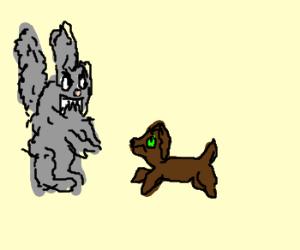 Giant dustbunny attacks green-eyed dog