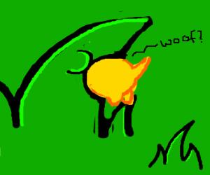Grass swallows yellow mammal.