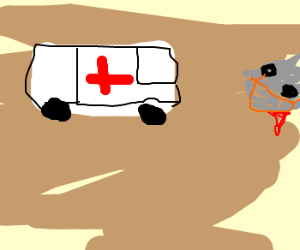 An ambulance arrives at an accident scene