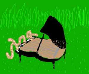 Famous piano sonatas with worms