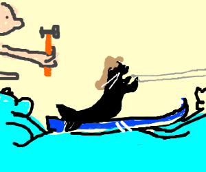 nudist hammering a waterski seal with a mullet