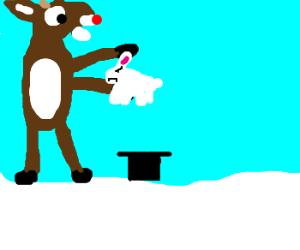 Magician Rudolph pulls grumpy rabbit from hat