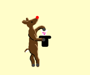 Rudolph performs magic trick, angers rabbit