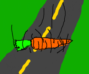 CARROT ROLLING ON THE FLOOR