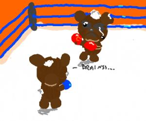 Zombie Teddy Bear Fight Club!