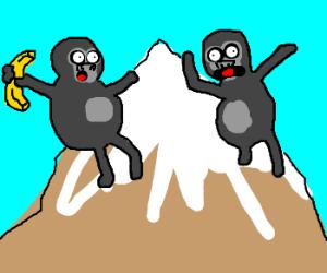 Mountain Gorillaz