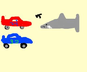 Nascar vs. Shark
