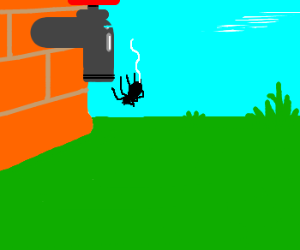 The Itsy Bitsy Spider Fell Off Waterspout