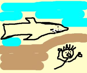 -----/\------\o/------- Help SHARK!!