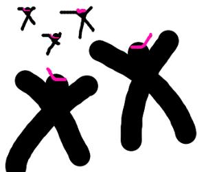 fragmented ninjas resemble chromosomes