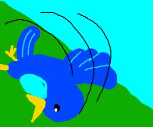 Bluebird tumbles down a hill.