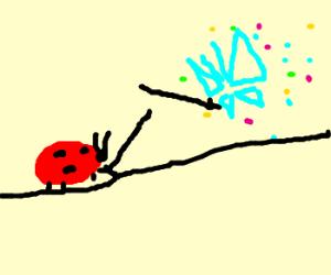Ladybug vs butterfly swordsmanship