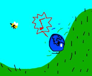 Bluebird tumbles down the hill