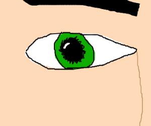 Gorgeous green eye.
