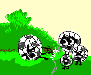 Tripping a soccer ball and his family over