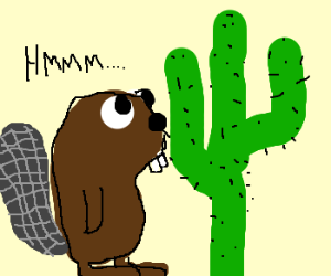 beaver moves to desert cactus scared for life