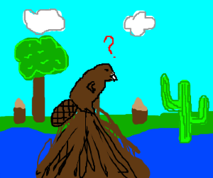 Beaver confused at the cactus' presence