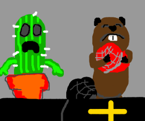 Mr. Cactus and Sir Beaver shock; Cat Suicide!
