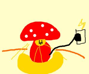A mushroom lamp