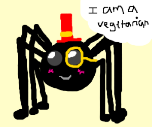 Cute spider doesn't bite