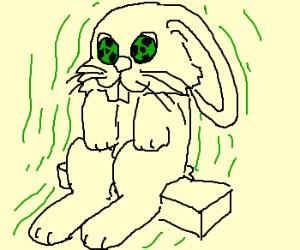 Toxic Bunny, sitting on a brick, RADIATING