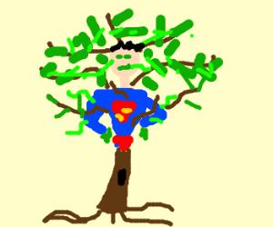 Superman as a plant