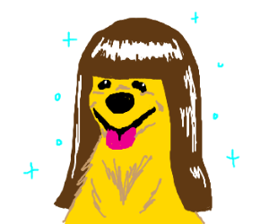 dog with beautiful brunette wig