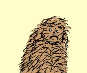 Hairy man is sad :'(