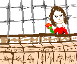 Lady in red dress hits on prisoners