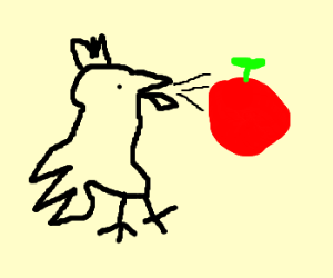 Chicken coughs up an apple.