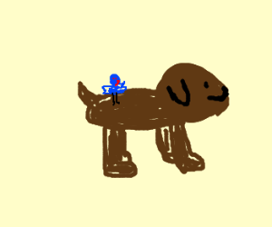 dog with bird on back wagging tail