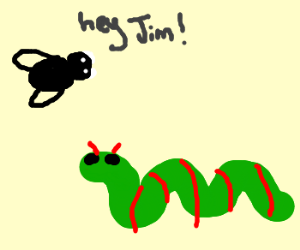 Fly greets his caterpillar friend Jim